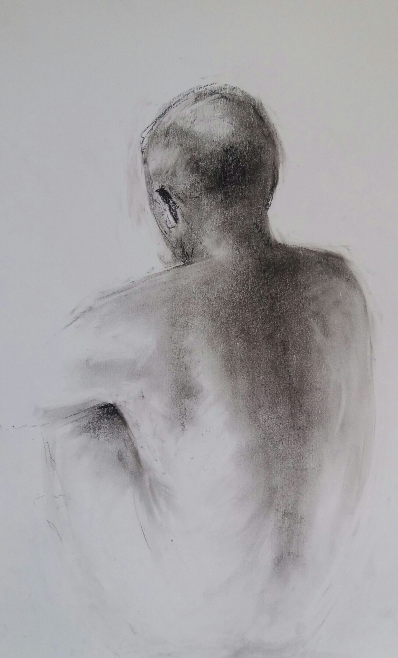 Life Drawing. Back Study, Compressed Charcoal